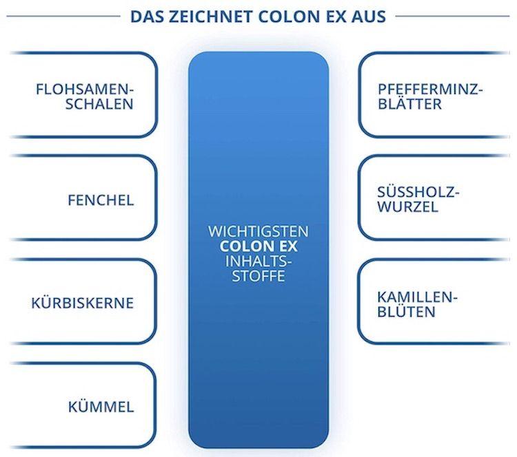 Wirkungen von Colon Ex grafisch dargestellt