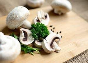 Pilzunverträglichkeit